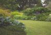 zakupy, ogród, meble ogrodowe
