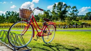 zakupy, rower damski